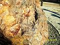 Campo del Cielo meteorite, El Chaco fragment, detail3.jpg