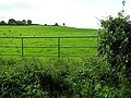Carnkenny Townland - geograph.org.uk - 1478634.jpg
