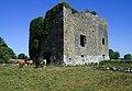 Castles of Connacht, Moyne, Mayo - geograph.org.uk - 1954616.jpg