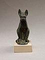 Cat MET 30.8.106 EGDP014443.jpg