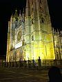 Catedral de León en la noche.jpg