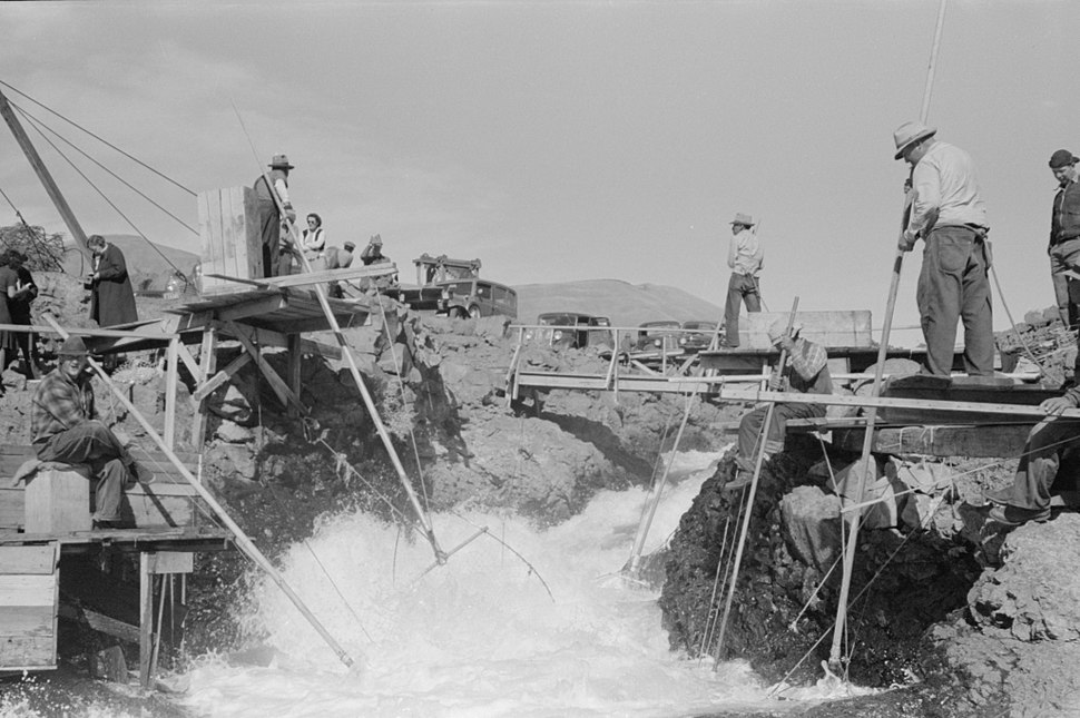 Celilo Falls Lee