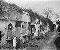 Cemetery New Orleans USGS33.jpg