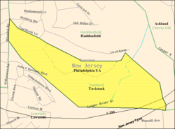 Census Bureau map of Tavistock, New Jersey