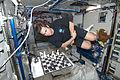 Chamitoff ISS Chess Game.jpg