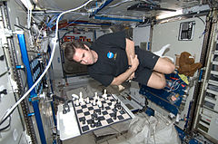 Chamitoff ISS Chess Game.jpg