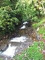 Cheeyappara Waterfalls - ചീയപ്പാറ വെള്ളച്ചാട്ടം 01.JPG