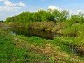 Chervyak lake Muromets5.JPG