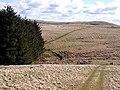 Cheviot landscape - geograph.org.uk - 1222129.jpg