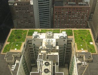 Nature-based solutions - Chicago City Hall green roof