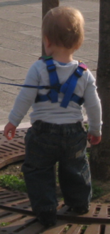 Child Harness (Standard type)