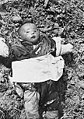 Child killed in Nanking massacre.jpg