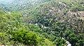 Chinnar wildlife Sanctuary - panoramio.jpg