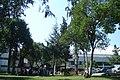 Ciudad Universitaria, pumabus - panoramio.jpg
