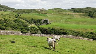Clifden Castle - Clifden Castle viewed from the west with the gateway in the background.