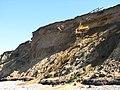 Cliffs at West Runton Beach - geograph.org.uk - 794779.jpg