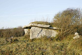 Megalith - Clooneen wedge tomb, the Burren, County Clare, Ireland