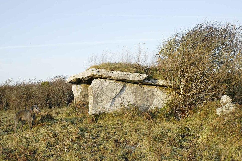 Clooneen wedge tomb
