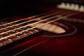 Close-up Acoustic Guitar.jpg