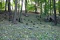 Cmentarz żydowski w Będzinie24.jpg