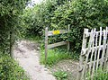 Coastal path junction - geograph.org.uk - 484597.jpg