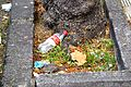 Colección Cans & Plastics by elduendesuarez 01.JPG