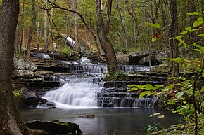 Collins Creek Heber Springs, AR.jpg