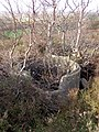 Concrete remains on Ibsley Common, New Forest - geograph.org.uk - 313817.jpg