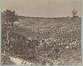 Confederate prisoners at Belle Plain Landing, Va., captured with Johnson's Division, May 12, 1864 LCCN2013645527.jpg