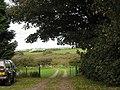 Cors Bodwrog fen from near Bodewran Bach - geograph.org.uk - 1014507.jpg