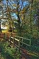 Cottingham Park, Autumn 2010, IMG 3356 - panoramio.jpg
