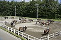 Crane Horse Club - panoramio.jpg