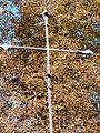 Croix grecque limitée par les fleurons en fleurs de lys.JPG