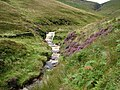 Crowden Brook - geograph.org.uk - 1473708.jpg