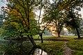 Dülmen, Wildpark -- 2015 -- 8864-70.jpg