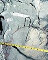 DGS II-MINEBACK, NEVADA TEST SITE - DPLA - 7ec45fb7152c02471b7722bca5f6a2f3.jpg