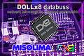DOLLx8 network.jpg
