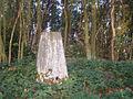 Dalebrow Trig Pillar, 148 m, Prestbury - geograph.org.uk - 261288.jpg