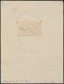 Danio devario - 1807-1822 - Print - Iconographia Zoologica - Special Collections University of Amsterdam - UBA01 IZ15000116.tif