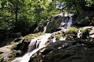 Environment of Virginia - Dark Hollow Falls in Shenandoah National Park