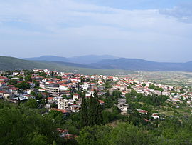 A view of Davleia