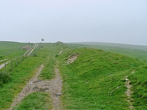 Earthworks (archaeology) - Offa's Dyke, southern Britain
