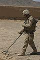 Defense.gov News Photo 080912-M-9389C-082.jpg