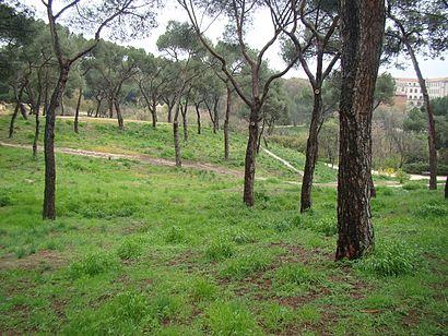 Cómo llegar a Parque Dehesa De La Villa en transporte público - Sobre el lugar