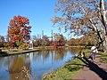 Delaware Canal w dog.JPG