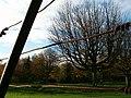 Delft - Hertenkamp - 2004 - panoramio - StevenL (1).jpg