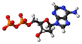 Deoxyadenosine-diphosphate-anion-3D-balls.png