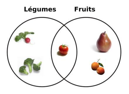 Relation Entre Fruits Et Légumes