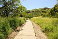 Diamond Head Hike (3) (17).jpg