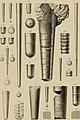 Die Versteinerungen des rheinischen Schichtensystems in Nassau. Mit einer kurzgefassten Geognosie dieses Gebietes und mit steter Berücksichtigung analoger Schichten anderer Lander (1850) (14597542858).jpg